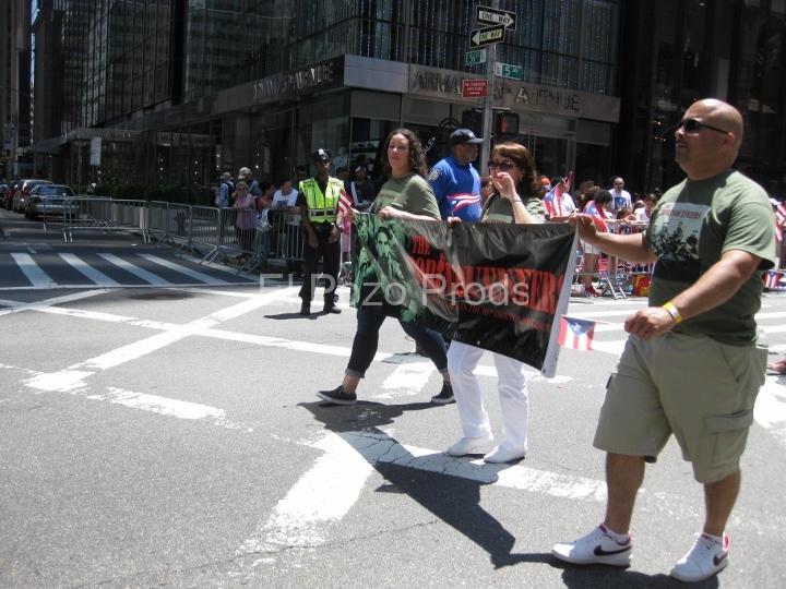 2014-06-08-NPR-Parade (21)